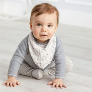 Bear Hugs Muslin Bandana Bib Set